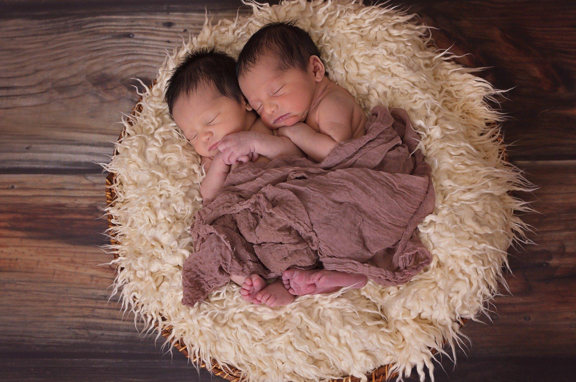 Mellizos y gemelos. ¿Cuál es la diferencia?